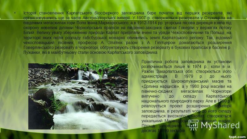 Історія становлення Карпатського біосферного заповідника бере початок від перших резерватів, які організовувались ще за часів Австро-Угорської імперії. У 1907 р. створюються резервати у Стужиці та на південних мегасхилах гори Попа Івана Мармароського