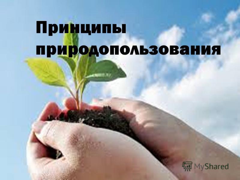 Принципы природопользования