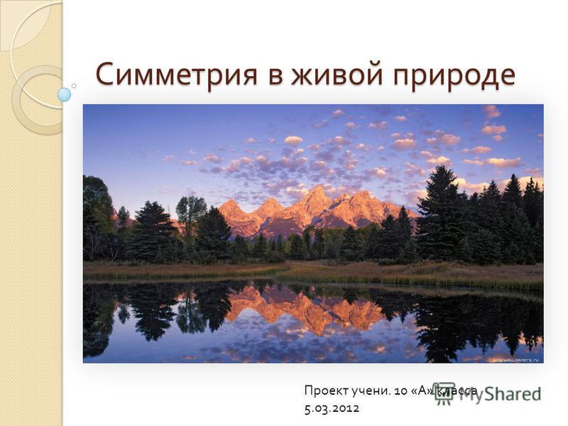 Симметрия в живой природе Проект ученик. 10 « А » класса 5.03.2012