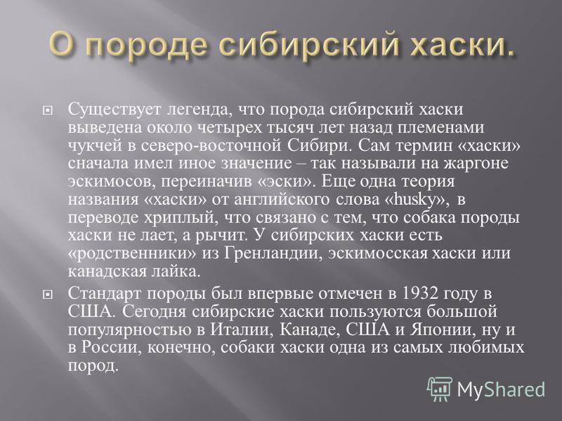 Существует легенда, что порода сибирский хаски выведена около четырех тысяч лет назад племенами чукчей в северо - восточной Сибири. Сам термин « хаски » сначала имел иное значение – так называли на жаргоне искимосов, переиначив « иски ». Еще одна тео