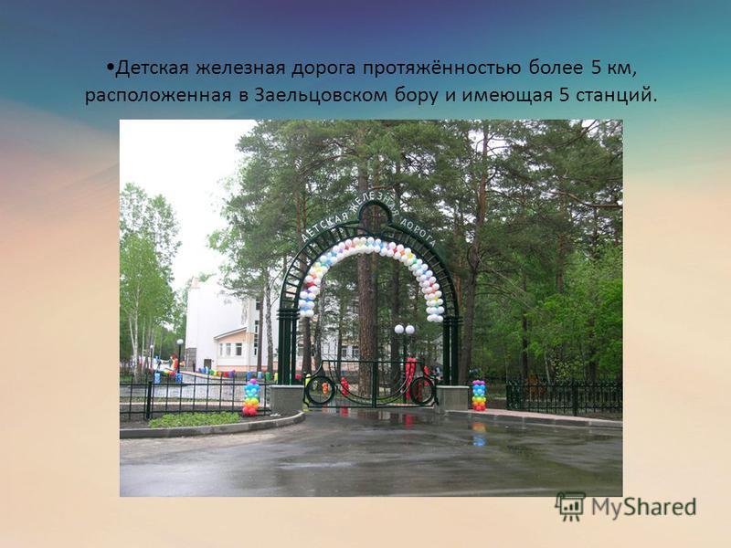 Детская железная дорога протяжённостью более 5 км, расположенная в Заельцовском бору и имеющая 5 станций.
