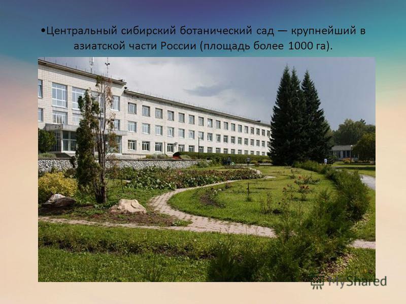 Центральный сибирский ботанический сад крупнейший в азиатской части России (площадь более 1000 га).