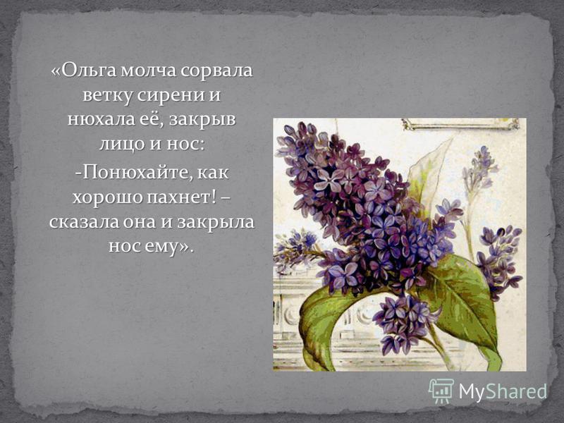 «Ольга молча сорвала ветку сирени и нюхала её, закрыв лицо и нос: -Понюхайте, как хорошо пахнет! – сказала она и закрыла нос ему».