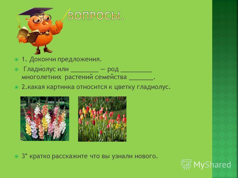 1. Докончи предложения. Гладиулус или ________ род _________ многолетних растений семейства _______. 2. какая картинка относится к цветку гладиулус. 3* кратко расскажите что вы узнали нового.
