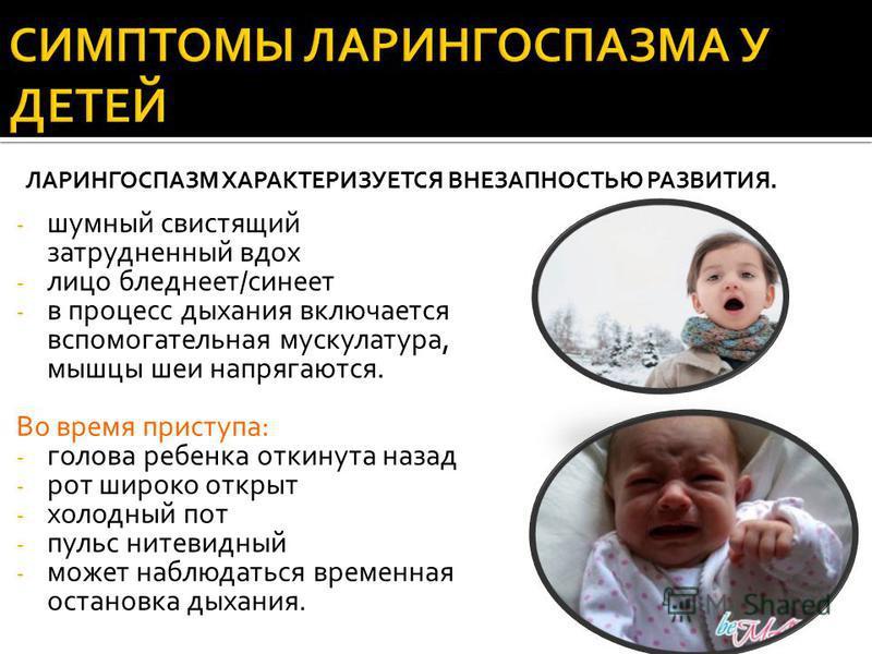 - шумный свистящий затрудненный вдох - лицо бледнеет/синеет - в процесс дыхания включается вспомогательная мускулатура, мышцы шеи напрягаются. Во время приступа: - голова ребенка откинута назад - рот широко открыт - холодный пот - пульс нитевидный -