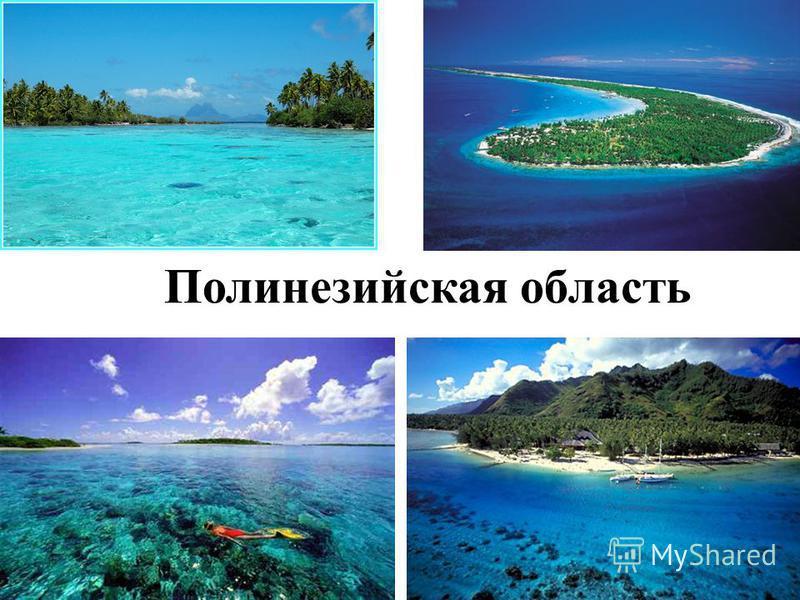 Полинезийская область