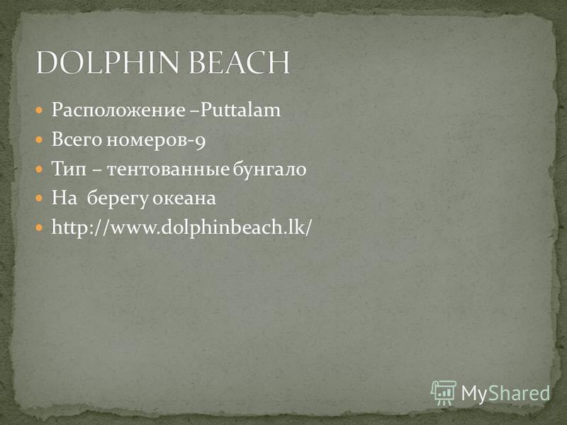 Расположение –Puttalam Всего номеров-9 Тип – тентованные бунгало На берегу океана http://www.dolphinbeach.lk/