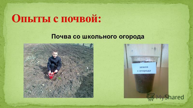 Почва со школьного огорода