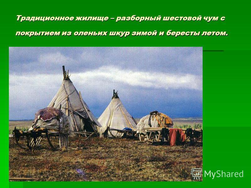 Традиционное жилище – разборный шестовой чум с покрытием из оленьих шкур зимой и бересты летом.