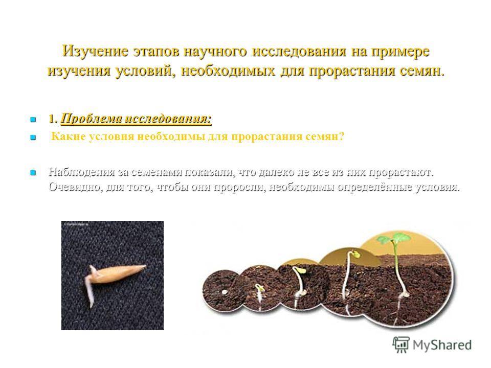 Изучение этапов научного исследования на примере изучения условий, необходимых для прорастания семян. 1. Проблема исследования: 1. Проблема исследования: Какие условия необходимы для прорастания семян? Наблюдения за семенами показали, что далеко не в