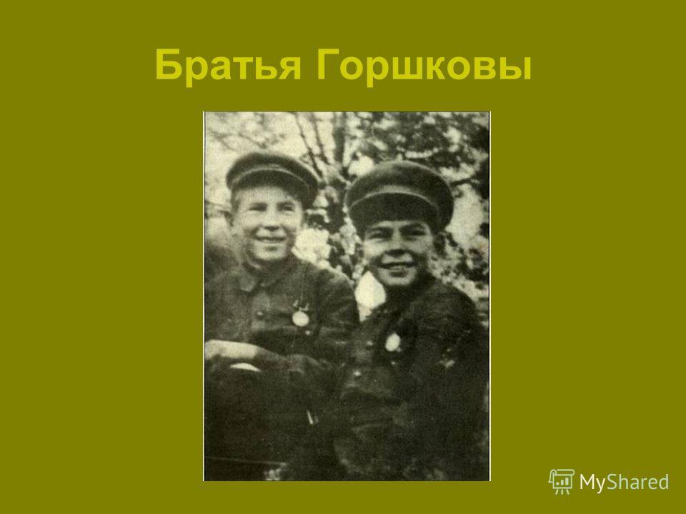 Братья Горшковы