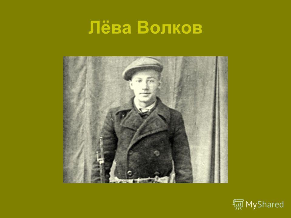 Лёва Волков