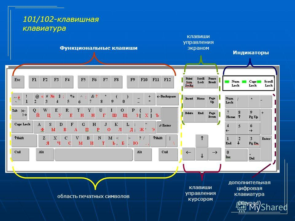 Функциональные клавиши Индикаторы область печатных символов клавиши управления курсором дополнительная цифровая клавиатура (Keypad) клавиши управления экраном 101/102-клавишная клавиатура