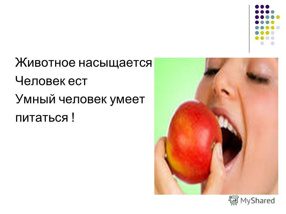 Животное насыщается Человек ест Умный человек умеет питаться !