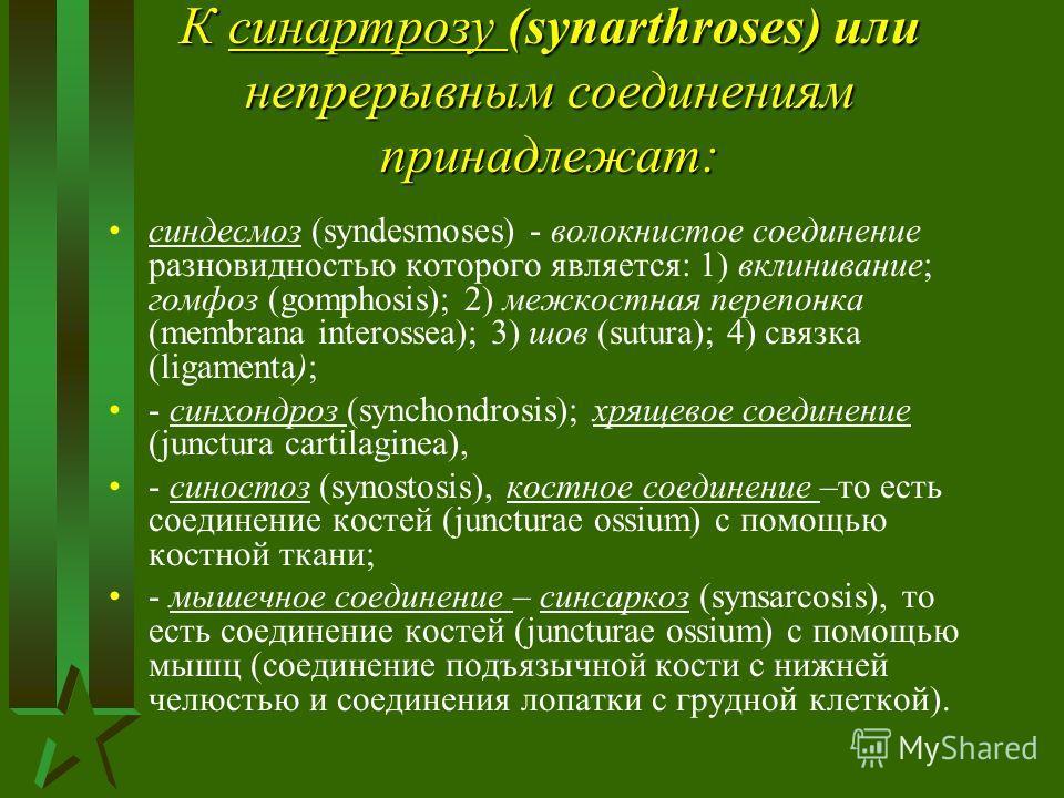 К синартрозу (synarthroses) или непрерывным соединениям принадлежат: синдесмоз (syndesmoses) - волокнистое соединение разновидностью которого является: 1) вклинивание; гомфоз (gomphosis); 2) межкостная перепонка (membrana interossea); 3) шов (sutura)