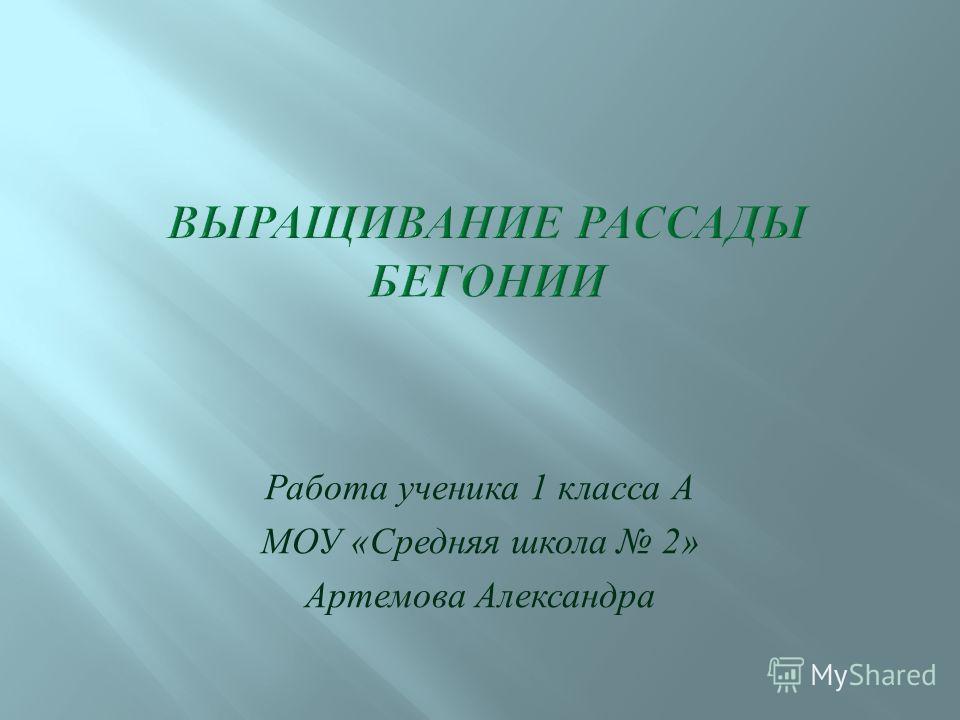 Работа ученика 1 класса А МОУ « Средняя школа 2» Артемова Александра