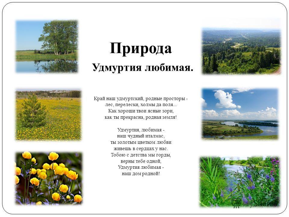 Природа Удмуртия любимая. Край наш удмуртский, родные просторы - лес, перелески, холмы да поля... Как хороши твои ясные зори, как ты прекрасна, родная земля! Удмуртия, любимая - наш чудный италмас, ты золотым цветком любви живешь в сердцах у нас. Тоб