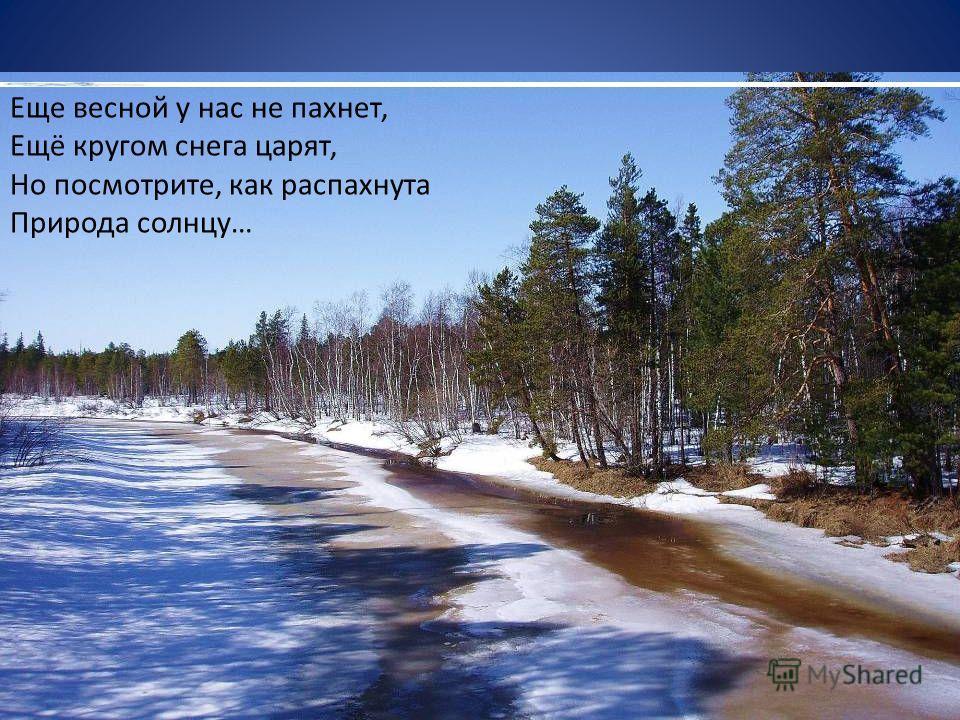 Еще весной у нас не пахнет, Ещё кругом снега царят, Но посмотрите, как распахнута Природа солнцу…