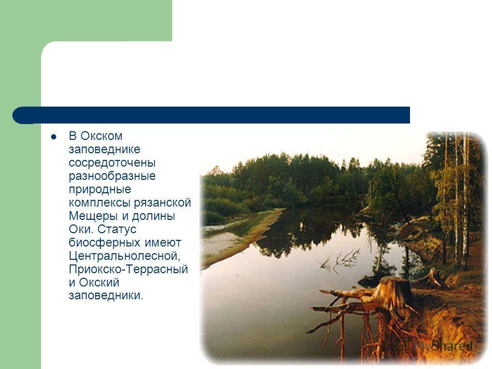 В Окском заповеднике сосредоточены разнообразные природные комплексы рязанской Мещеры и долины Оки. Статус биосферных имеют Центральнолесной, Приокско-Террасный и Окский заповедники.
