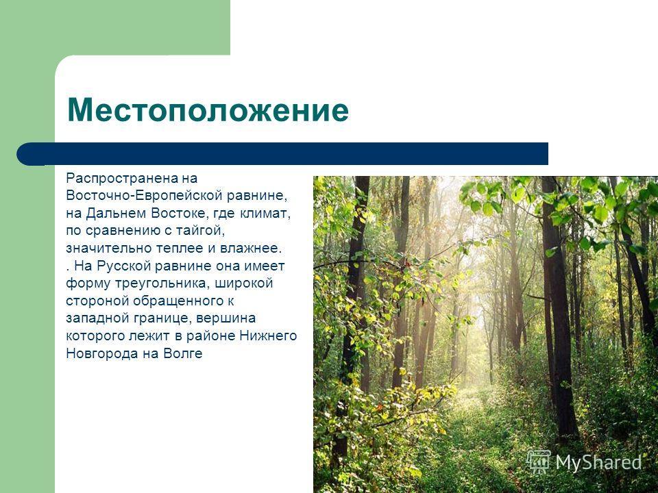 Местоположение Распространена на Восточно-Европейской равнине, на Дальнем Востоке, где климат, по сравнению с тайгой, значительно теплее и влажнее.. На Русской равнине она имеет форму треугольника, широкой стороной обращенного к западной границе, вер
