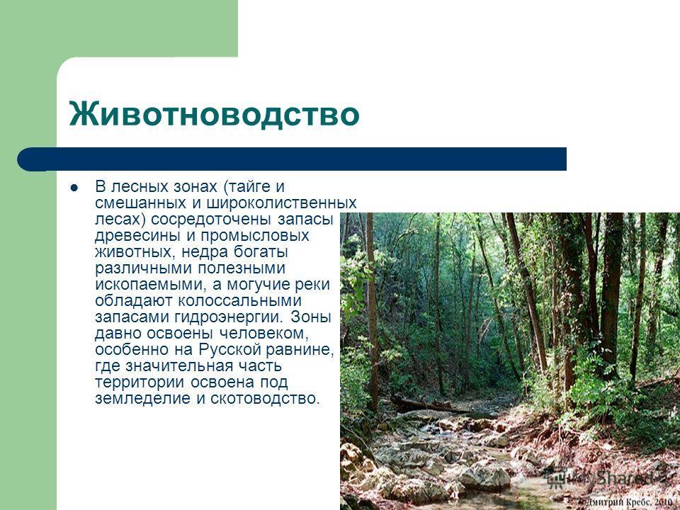 Животноводство В лесных зонах (тайге и смешанных и широколиственных лесах) сосредоточены запасы древесины и промысловых животных, недра богаты различными полезными ископаемыми, а могучие реки обладают колоссальными запасами гидроэнергии. Зоны давно о