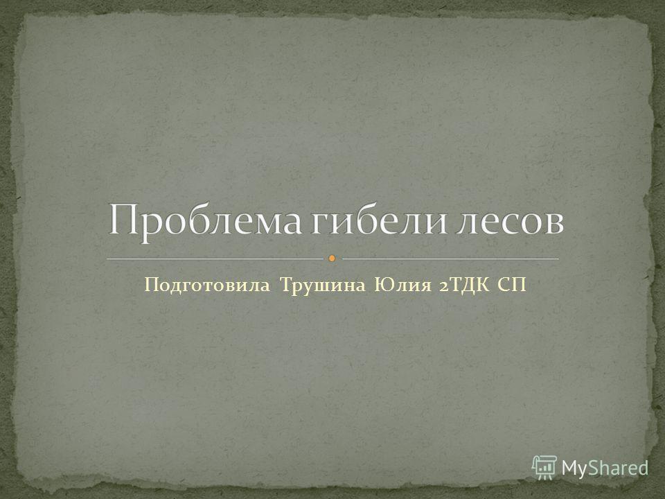 Подготовила Трушина Юлия 2ТДК СП