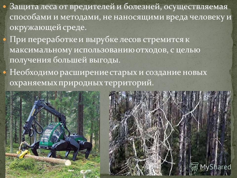 Защита леса от вредителей и болезней, осуществляемая способами и методами, не наносящими вреда человеку и окружающей среде. При переработке и вырубке лесов стремится к максимальному использованию отходов, с целью получения большей выгоды. Необходимо