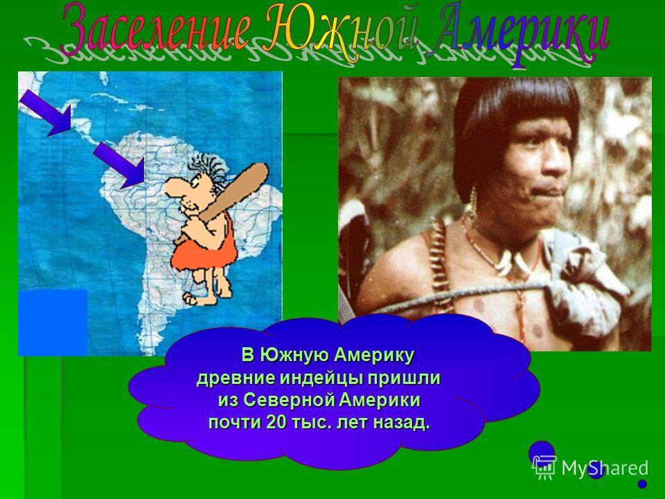 В Южную Америку древние индейцы пришли из Северной Америки почти 20 тыс. лет назад. В Южную Америку древние индейцы пришли из Северной Америки почти 20 тыс. лет назад.