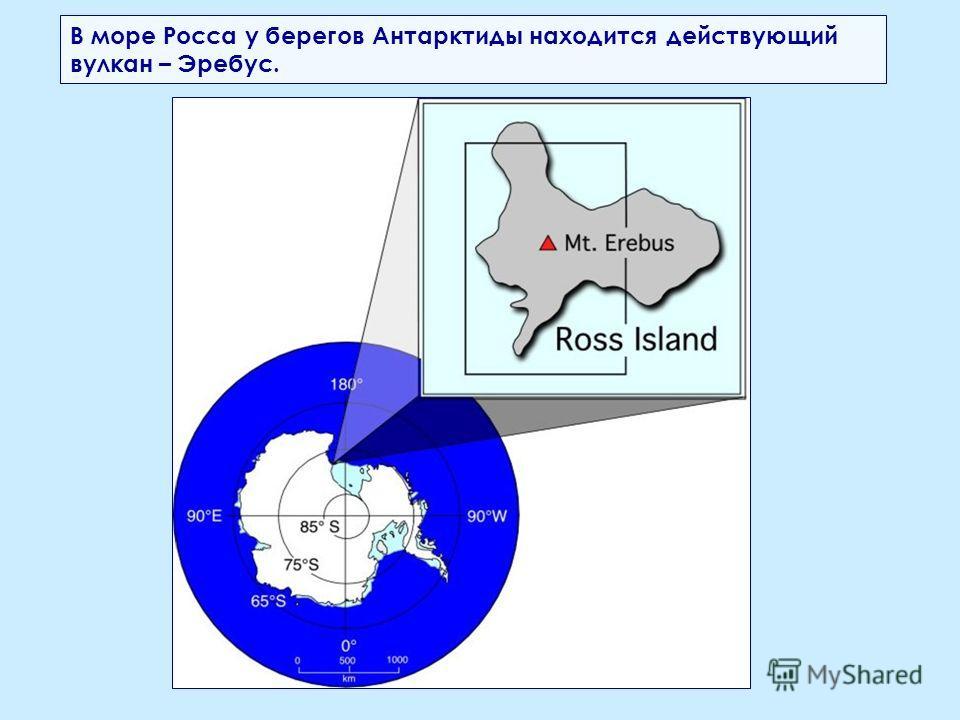В море Росса у берегов Антарктиды находится действующий вулкан – Эребус.