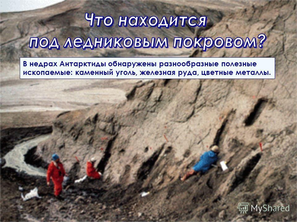 В недрах Антарктиды обнаружены разнообразные полезные ископаемые: каменный уголь, железная руда, цветные металлы.