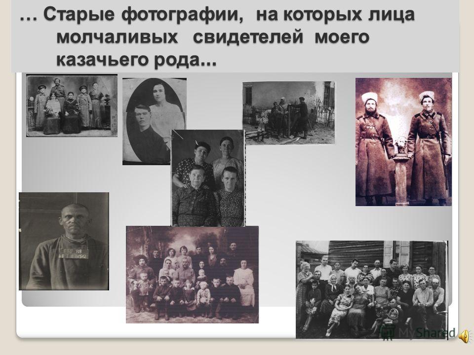 … Старые фотографии, на которых лица молчаливых свидетелей моего казачьего рода …