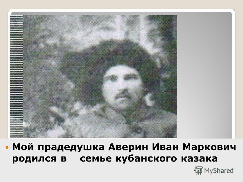 Мой прадедушка Аверин Иван Маркович родился в семье кубанского казака