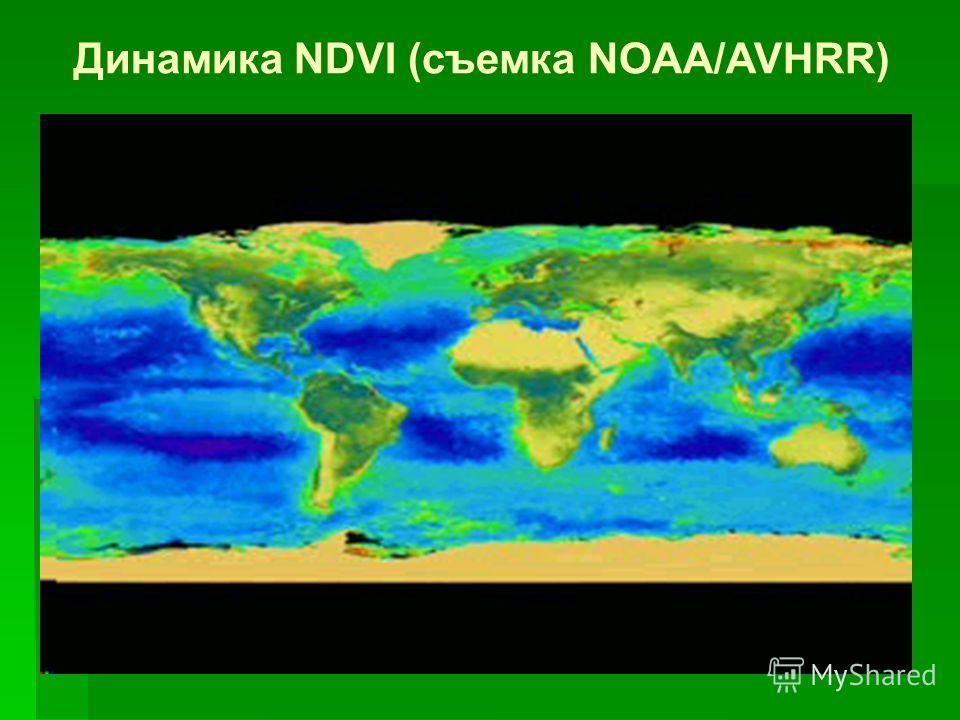 Пример более детальной классификации экотона лес-тундра по данным AHVRR 1 – rocky desert 2 – mountain tundra 3 – arctic and dwarf tundra 4 – tussock tundra 5 – dwarf tundra 6 – shrub tundra 7 – sparse forest-tundra (0,1 and less closure) 8 – low dens