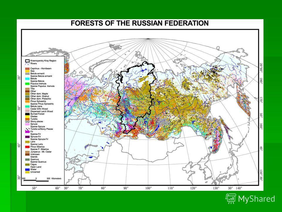 Упрощенная классификация методов измерения и расчета потоков и пулов углерода Данные инвентаризации лесов (данные лесной таксации) Наземные измерения -Измерения пулов на экспериментальных участках -Измерения потоков (eddy-covariance) Атмосферные изме