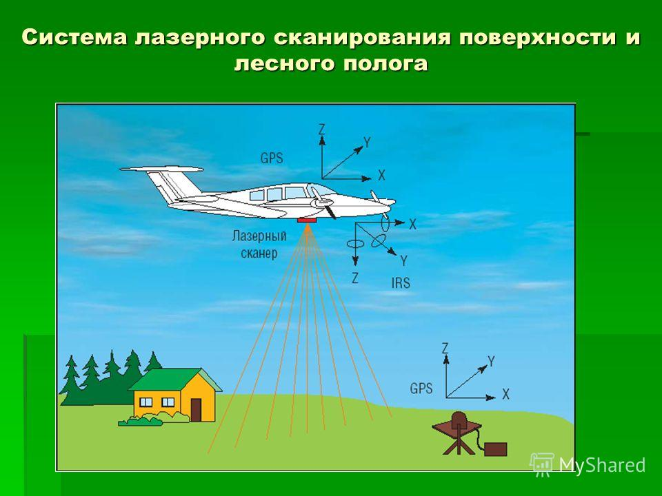 Сопряженность между трендами NDVI (ассимиляционной активностью растительности) и трендами в приросте древесных растений в Сибири