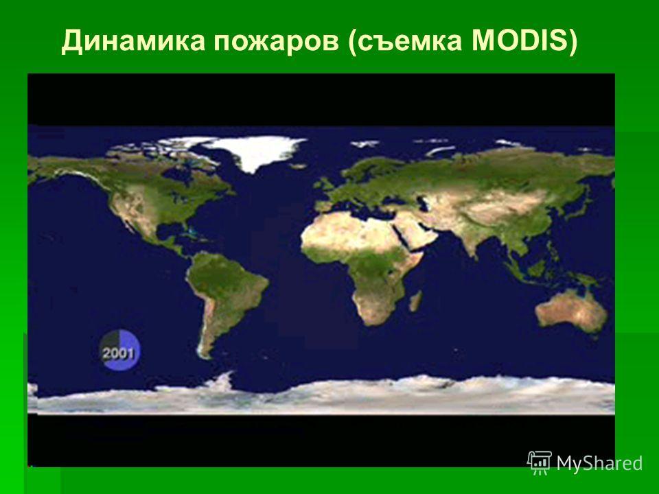 Пожары в Северной Евразии в 1998 г. Burnt area (million Ha) 11 Of which in Russia 10.4 Including forest land 7.1 Official data 3.8 Consumed Carbon, Tg 176