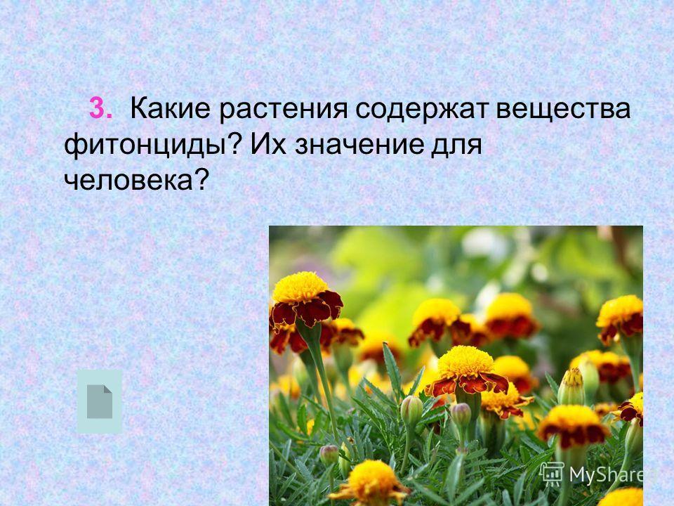 3. Какие растения содержат вещества фитонциды? Их значение для человека?