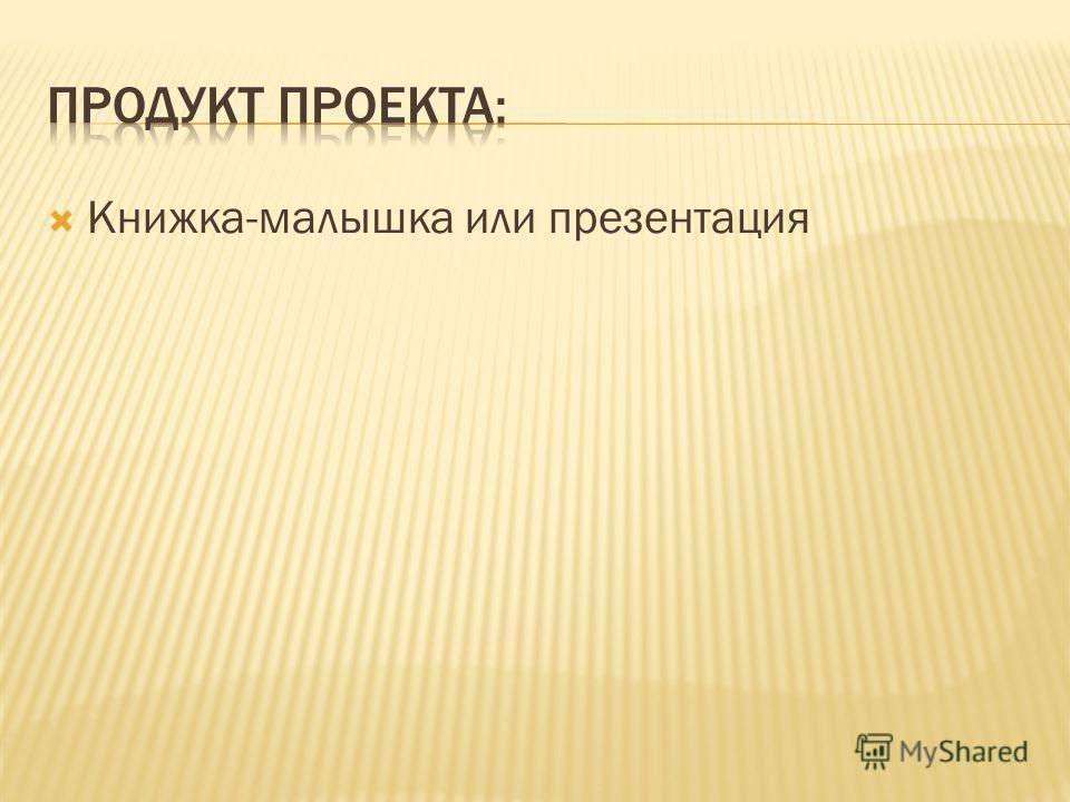 Книжка-малышка или презентация
