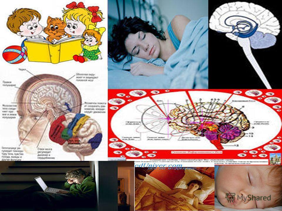 Высшие функции мозга, связаны с умственной деятельностью человека это сенсорное восприятие, целенаправленное движение, обучение, память, эмоции, речь, мышление, бодрствование, сон, сознание, как осознание умственной и (или) физической деятельности.