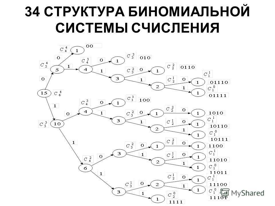 34 СТРУКТУРА БИНОМИАЛЬНОЙ СИСТЕМЫ СЧИСЛЕНИЯ