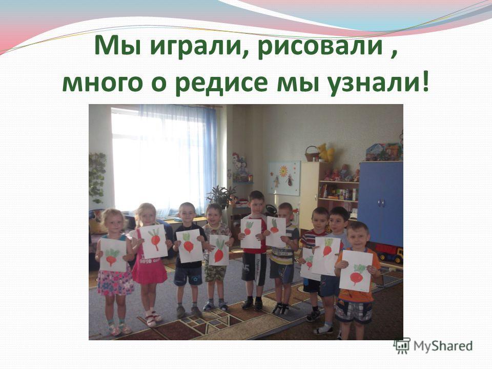Мы играли, рисовали, много о редисе мы узнали!
