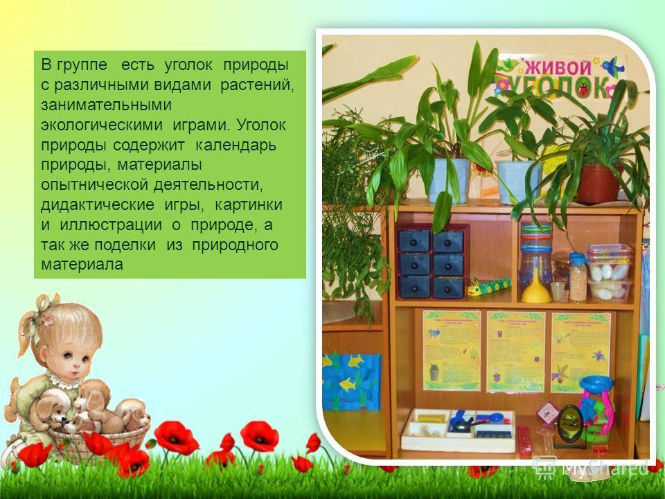 В группе есть уголок природы с различными видами растений, занимательными экологическими играми. Уголок природы содержит календарь природы, материалы опытнической деятельности, дидактические игры, картинки и иллюстрации о природе, а так же поделки из