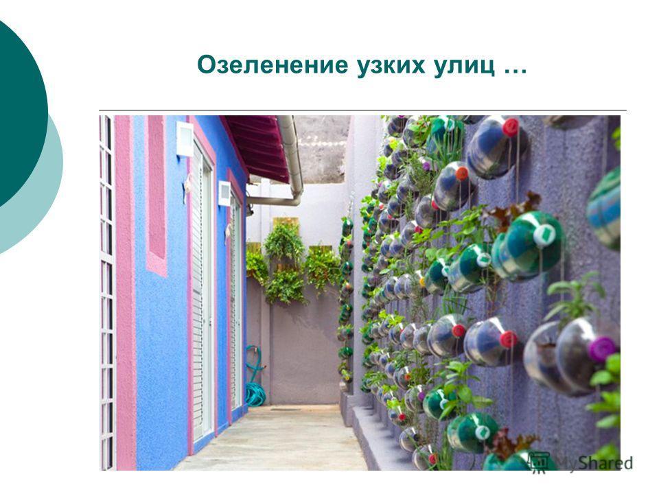 Озеленение узких улиц …