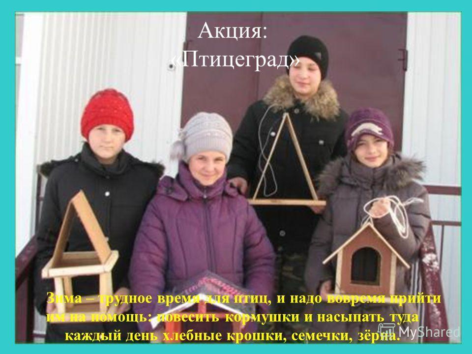 Акция: «Птицеград» Зима – трудное время для птиц, и надо вовремя прийти им на помощь: повесить кормушки и насыпать туда каждый день хлебные крошки, семечки, зёрна.