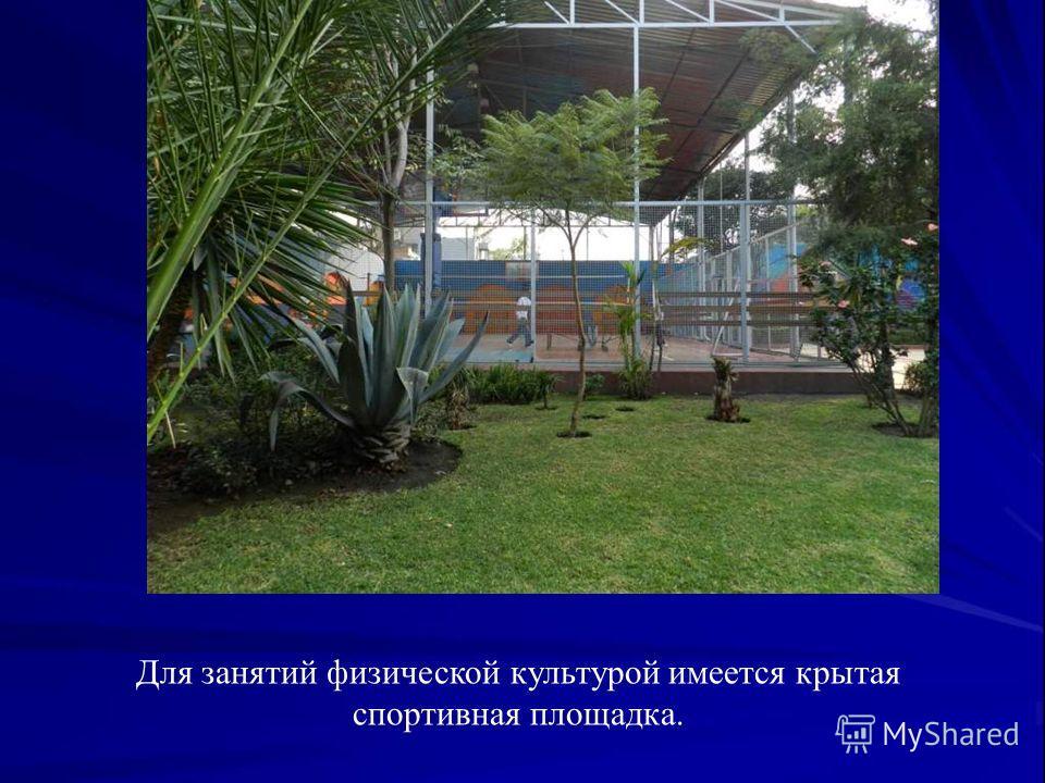 Для занятий физической культурой имеется крытая спортивная площадка.