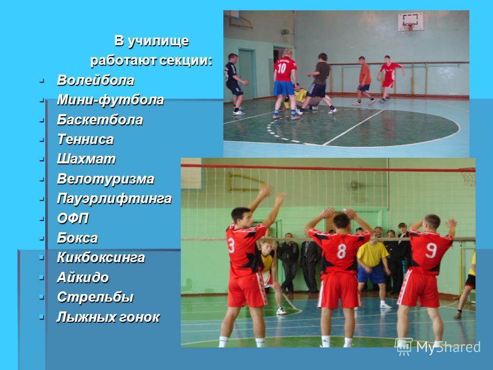 В училище работают секции: Волейбола Мини-футбола Баскетбола Тенниса Шахмат Велотуризма Пауэрлифтинга ОФП Бокса Кикбоксинга Айкидо Стрельбы Лыжных гонок