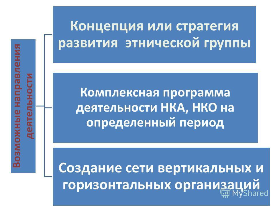 Виды экстремизма: Возможные направления деятельности Концепция или стратегия развития этнической группы Комплексная программа деятельностиНКА, НКО на определенный период Создание сети вертикальных и горизонтальных организаций