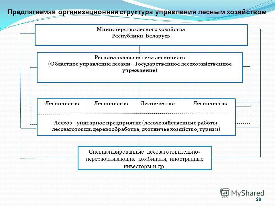 Предлагаемая организационная структура управления лесным хозяйством Министерство лесного хозяйства Республики Беларусь Региональная система лесничеств (Областное управление лесами – Государственное лесохозяйственное учреждение) Лесничество Лесничеств