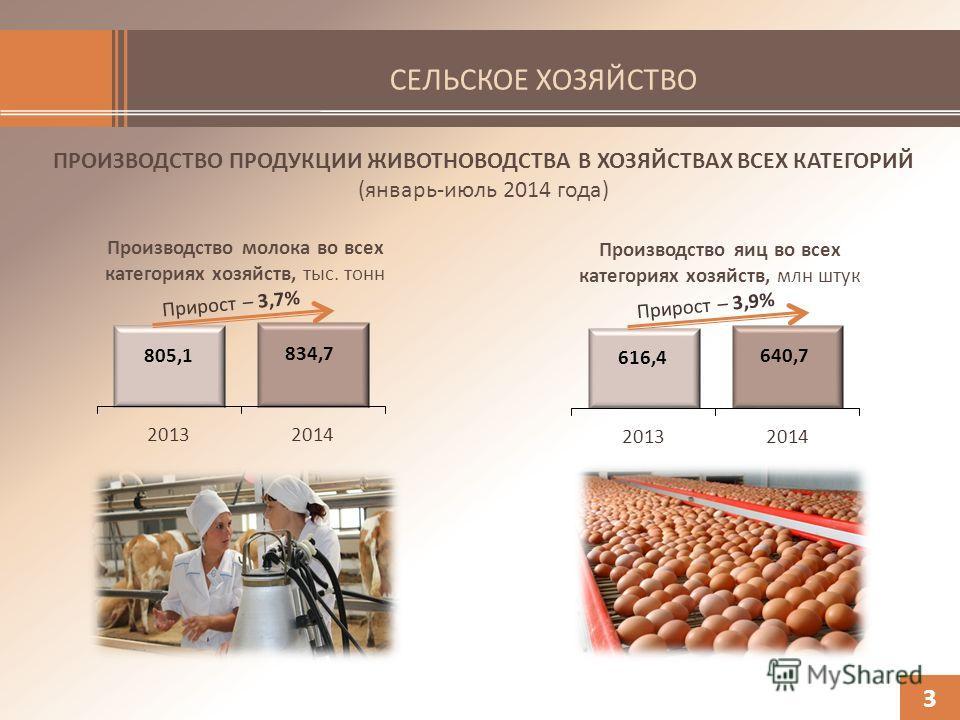 СЕЛЬСКОЕ ХОЗЯЙСТВО ПРОИЗВОДСТВО ПРОДУКЦИИ ЖИВОТНОВОДСТВА В ХОЗЯЙСТВАХ ВСЕХ КАТЕГОРИЙ (январь-июль 2014 года) 3 Производство молока во всех категориях хозяйств, тыс. тонн Производство яиц во всех категориях хозяйств, млн штук