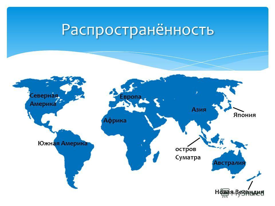 Распространённость Северная Америка остров Суматра Япония Южная Америка Африка Азия Европа Австралия Новая Зеландия